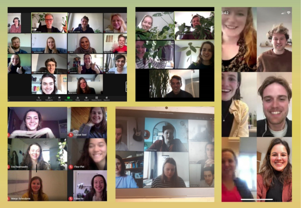 SDG Traineeship faces from online meetings